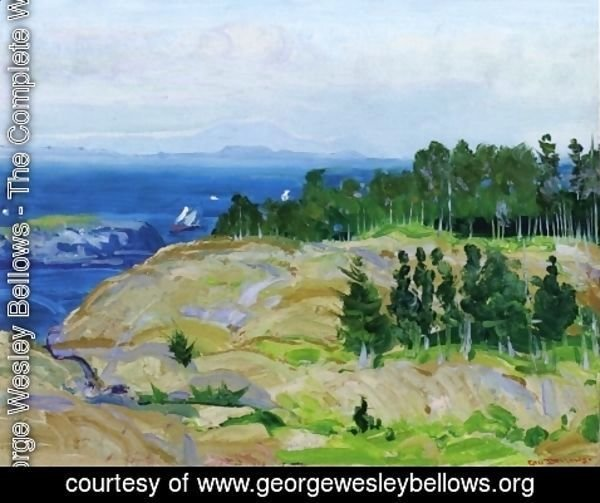 George Wesley Bellows - Green Point